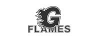 Flames Client Logo